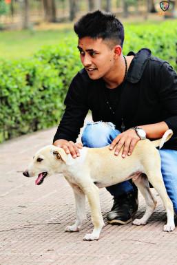 Dazzlerr - Umi Dobriyal Model Delhi