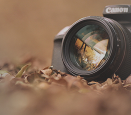 Dazzlerr : Photographers