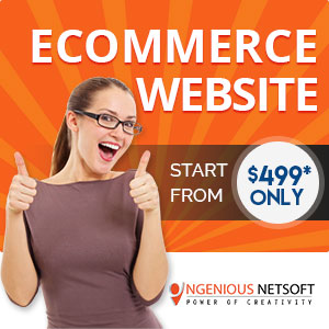 Ingenious Ecommerce Website Packages